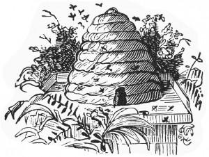 2-beehive-granger