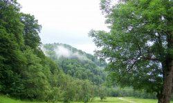 2014.iunie.La munte